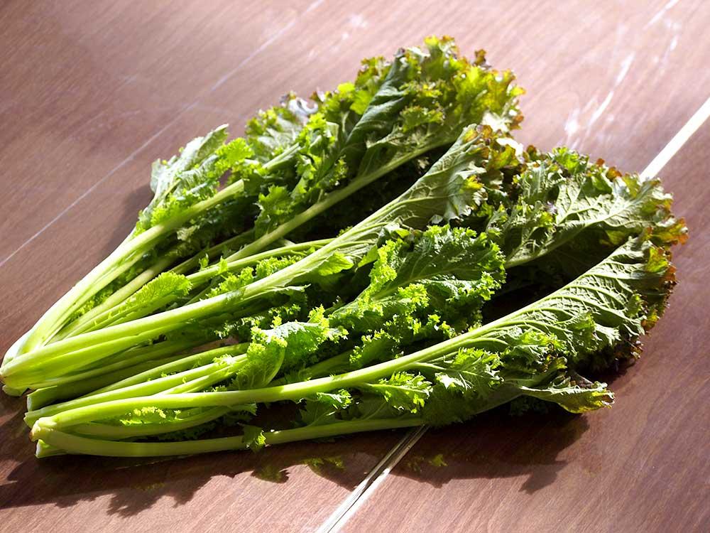 から し 菜 人気の「わさび菜」レシピ33選。ピリッと辛みがたまらない!